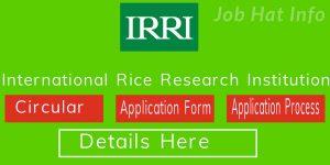 IRRI Job Circular