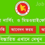 Job Circular at Bangladesh Nursing and Midwifery Council 3