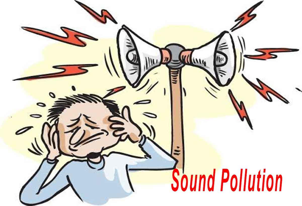 Sound Pollution Paragraph